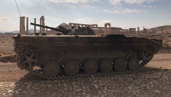 Военная техника Сирийской Арабской Республики возле историко-архитектурного комплекса Древней Пальмиры в сирийской провинции Хомс