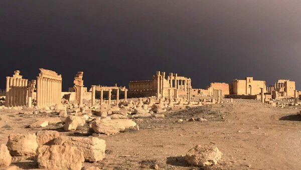 Пальмира при поддержке ВКС РФ была взята войсками Сирийской Арабской Республики. Архивное фото