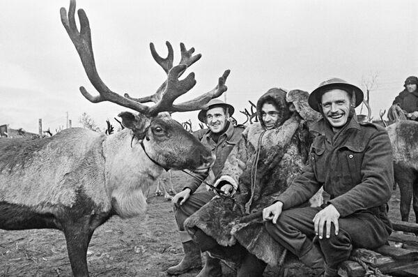 Советский оленевод с английскими авиамеханиками на одном из аэродромов в Заполярье, 1942