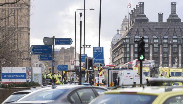 Ситуация на месте теракта у британского парламента. Архивное фото