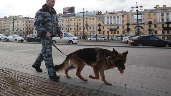 Сотрудник правоохранительных органов с собакой на улице в Санкт-Петербурге