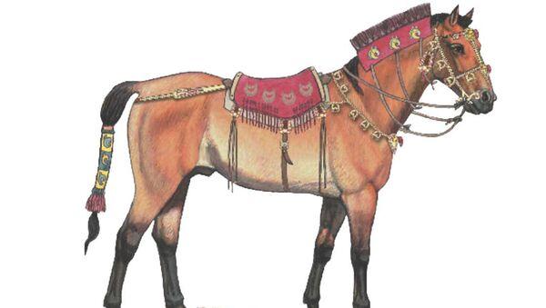 Реконструкция облика скифской лошади, сделанная на базе их ДНК