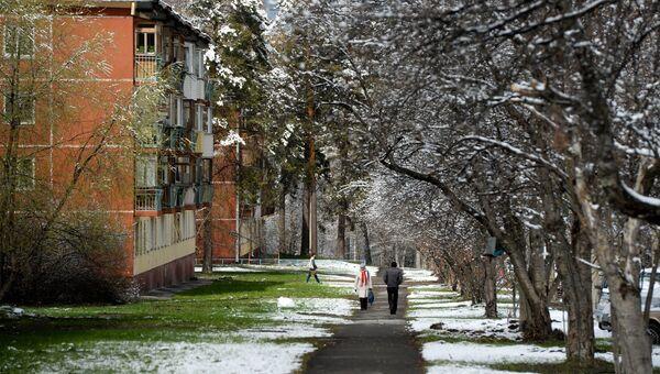 Жители на улице после снегопада в Новосибирском Академгородке