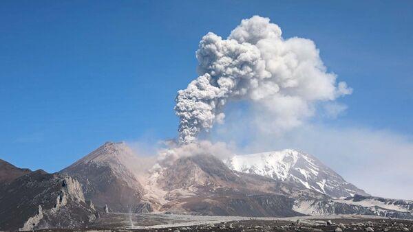 Выброс пепла на вулкане Шивелуч на Камчатке. Архивное фото