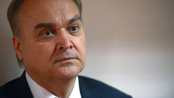 Заместитель министра иностранных дел РФ Анатолий Антонов в Госдуме РФ. 18 мая 2017
