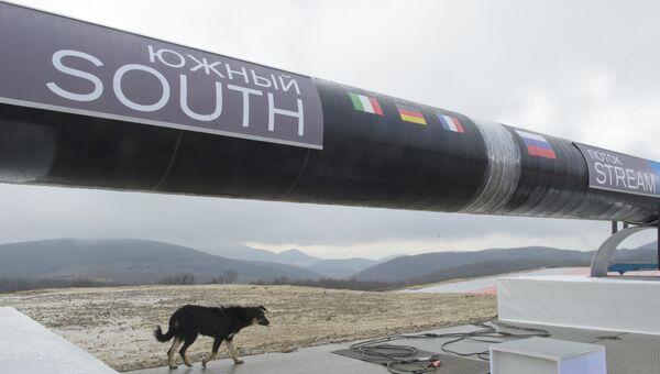 Подготовка к торжественному мероприятию, посвященному началу строительства газопровода Южный поток. 2012 год