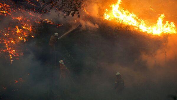 Тушение лесных пожаров в Португалии