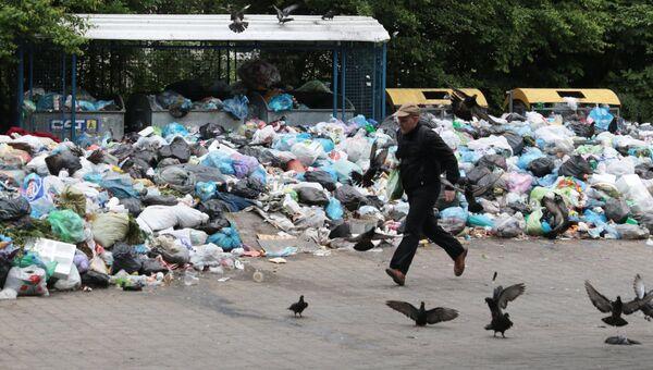 Невывезенный мусор на свалке во Львове