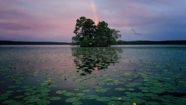 Работа фотографа из США Aaron Sandberg, занявшая 1-ое место в категории Природа в iPhone Photography Awards 2017