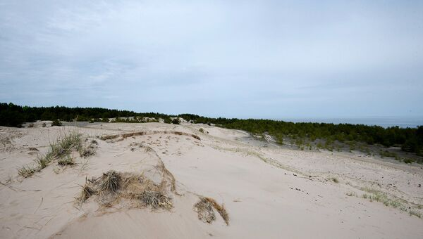С песчаного насыпа открывается отличный обзор на прибрежную зону, поэтому советским войскам так и не удалось взять остров