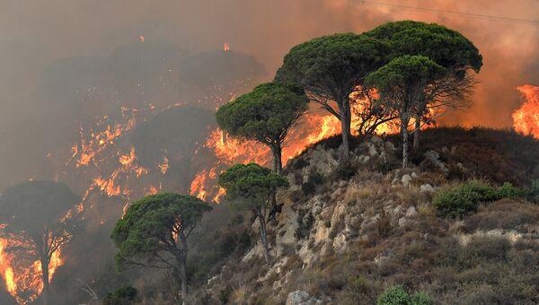 Лесные пожары в провинции Мессина, Италия. 10 июля 2017
