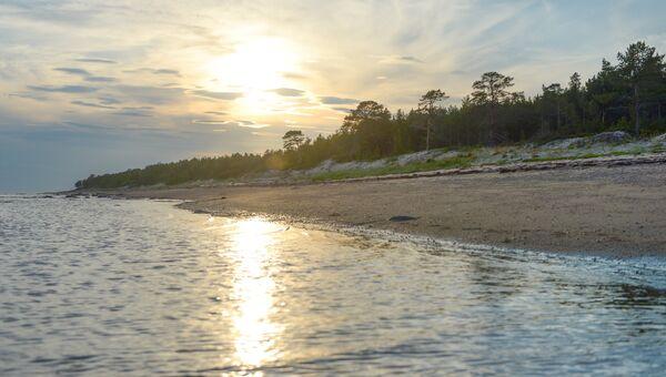 Берег Онежского залива. Архивное фото
