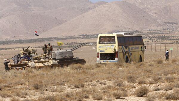 Сирийские военные и автобус с боевиками ИГ (группировка Исламское государство, запрещена в РФ) в районе Западного Каламуна. Архивное фото