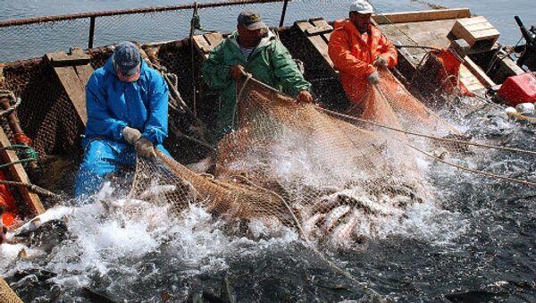 Рыболовы РФ получили в 2009 году 13 млрд рублей кредитов - Зубков