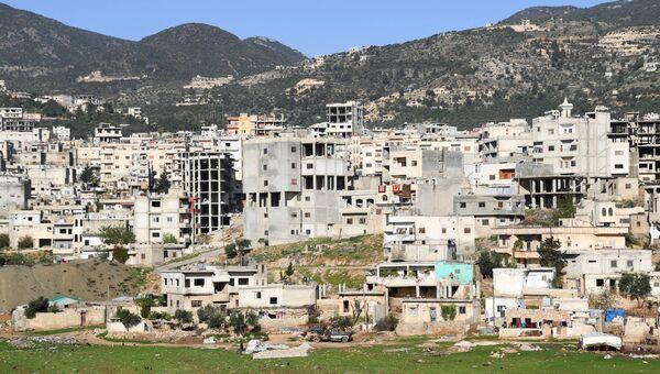 В сирийской провинции Хама. Архивное фото