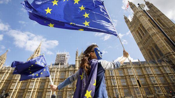 Акция протеста против прекращения членства Великобритании в ЕС у здания парламента в Лондоне. 11 сентября 2017
