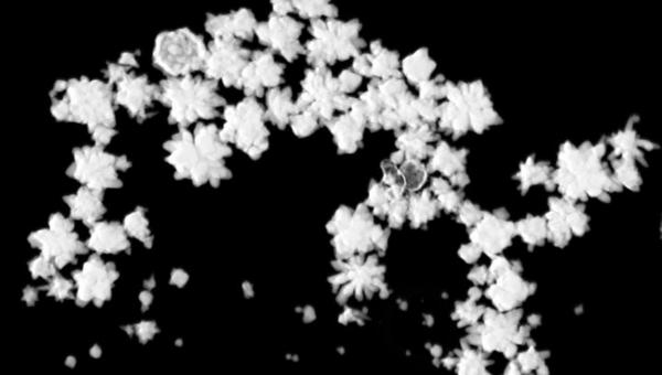 Наночастицы из золота под микроскопом