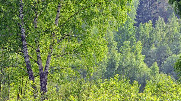 Национальный парк Смоленское поозерье
