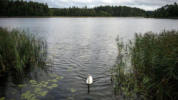 Россия и Белоруссия подписали соглашение о создании Заповедного Поозерья