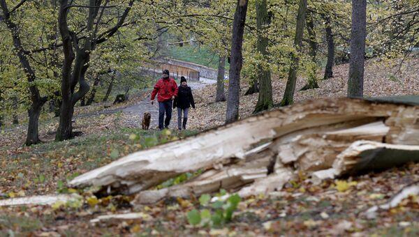 Жители проходят мимо упавшего дерева в парке в Праге, Чехия. 29 октября 2017