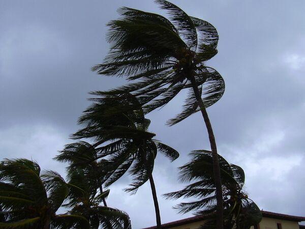 Ураган. Архив