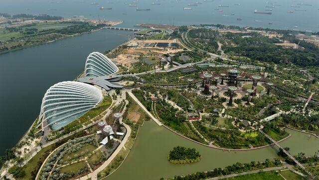 Сады Gardens by the Bay в Сингапуре