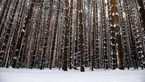 В Калужской области создается новая ООПТ
