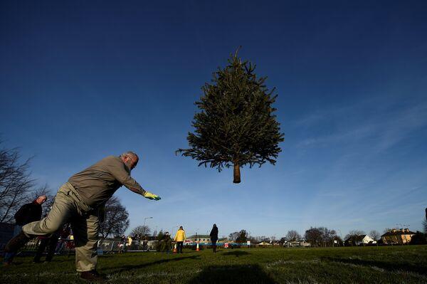 Мужчина участвует в соревнованиях по метанию елок в Ирландии. 7 января 2018 года