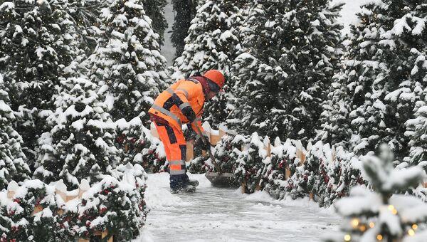 Коммунальные службы Москвы ликвидируют последствия сильного снегопада. Архивное фото