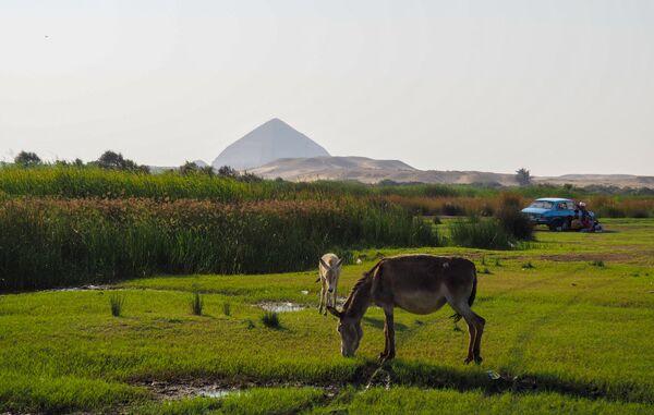 Местность в окрестностях Каира. На дальнем плане: древнеегипетская пирамида