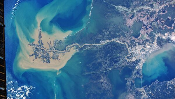 Дельта Миссисипи снятая с борта Международной космической станции Антоном Шкаплеровым