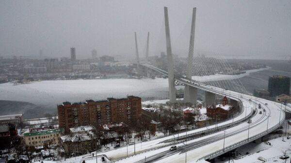 Вид с Орлиной сопки на вантовый мост через бухту Золотой Рог во Владивостоке