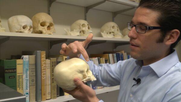 Маттиас Веласко держит копию черепа ребенка