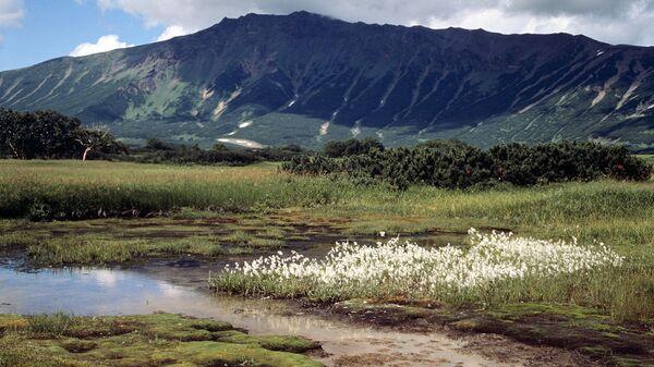 Природный парк Вулканы Камчатки набирает добровольцев на летний сезон