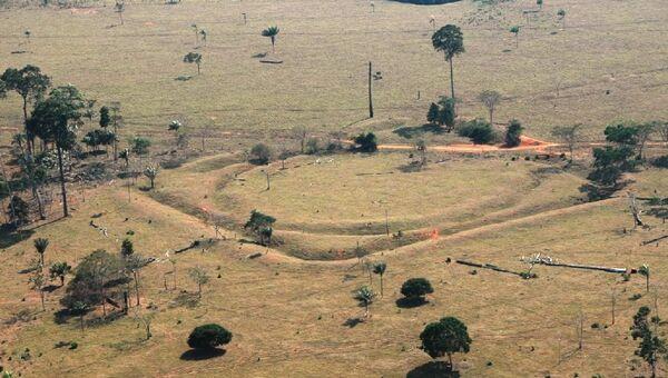 Останки поселений, найденных археологами в безлюдных лесах Амазонии