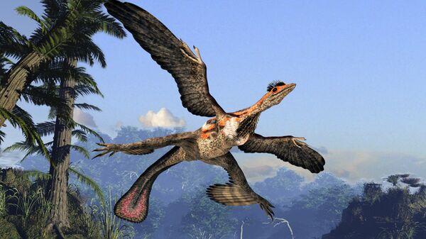 Мезозойский микрораптор гуи был покрыт перьями и умел летать