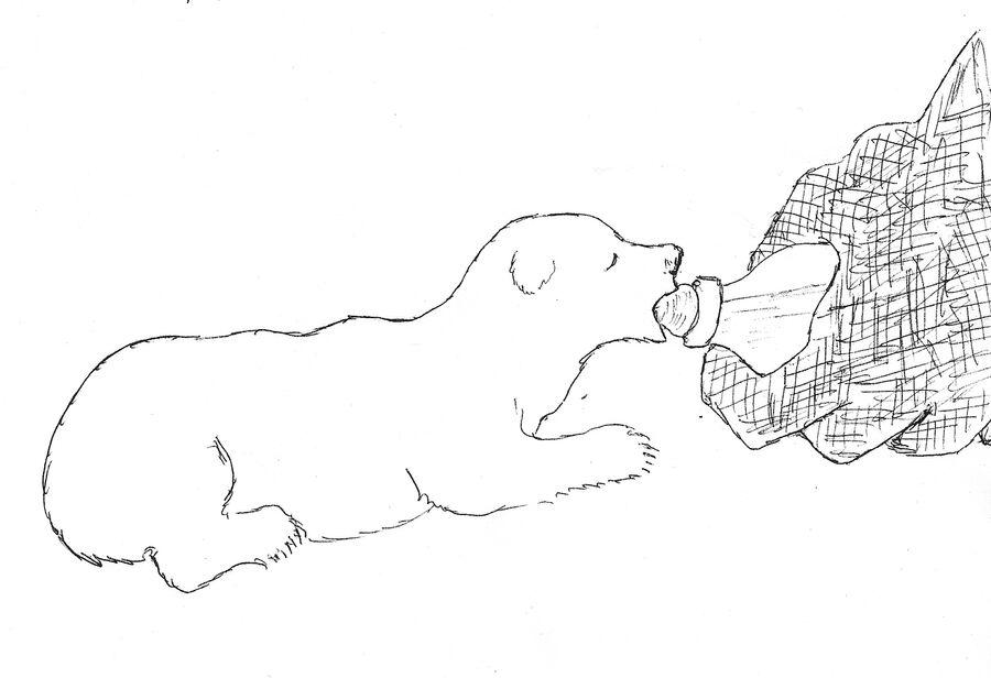 Рисунок Валентина Сергеевича Пажетнова