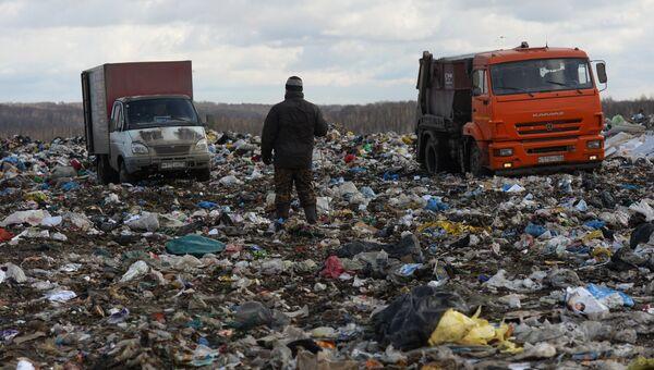 Полигон твердых бытовых отходов. Архивное фото