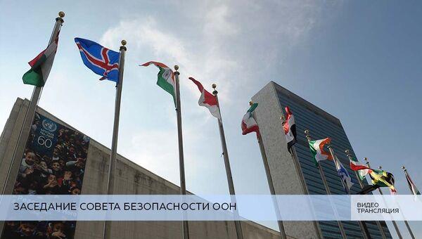 LIVE: Заседание СБ ООН по ситуации в Сирии