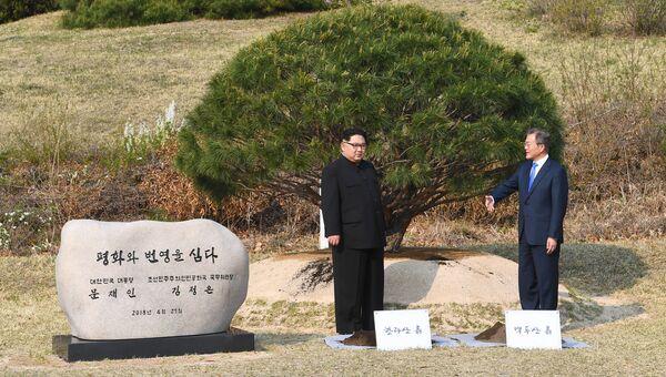 Лидер Северной Кореи Ким Чен Ын и президент Южной Кореи Мун Чжэ Ин приняли участие  в церемонии посадки дерева. 27 апреля 2018
