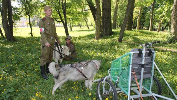 Участники акции, посвященной собакам, принимавшим участие в Великой Отечественной войне, в Калининграде. 9 мая 2018