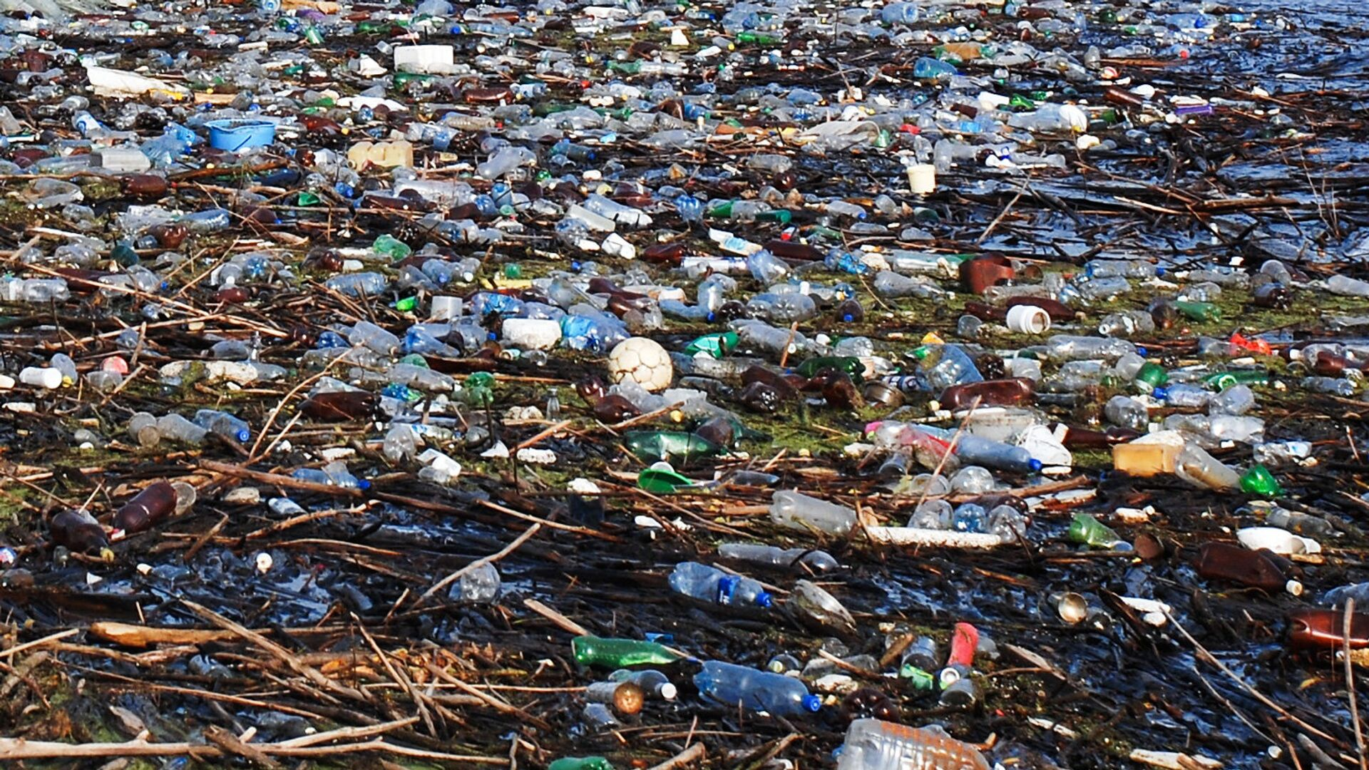 Минэкологии проверяет мусорный полигон под Нижним Новгородом, рядом с которым погибла рыба - РИА Новости, 1920, 04.05.2021