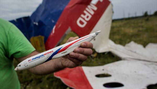 Мужчина демонстрирует модель разбившегося самолета, найденную на месте крушения лайнера Boeing 777 Малайзийских авиалиний в районе села Рассыпное Донецкой области. Архивное фото