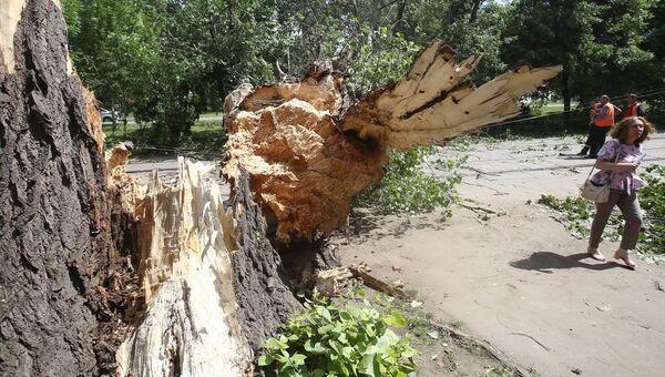 Последствия сильного ветра в Центральной России. Архивное фото