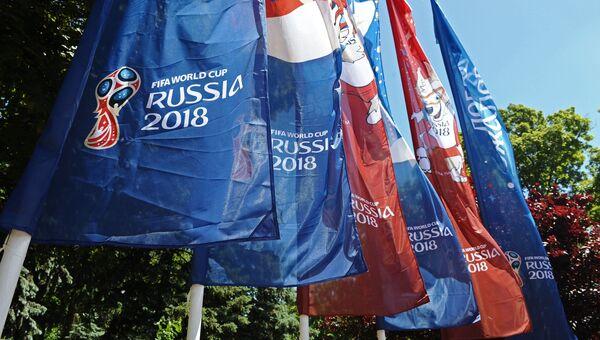 Флаги, посвященные чемпионату мира по футболу ФИФА-2018, в Ростове-на-Дону. Архивное фото