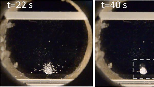 Печать культурами клеток в трехмерном биопринтере