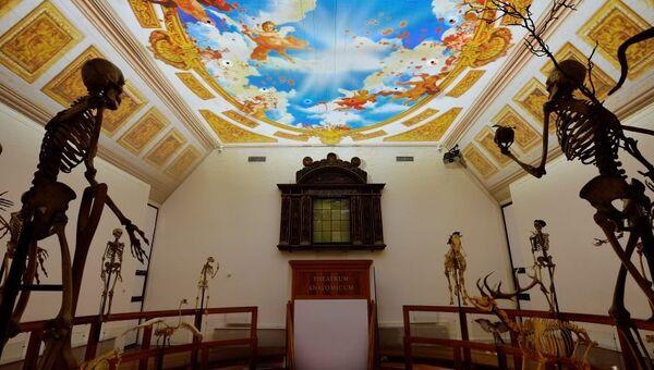 Музей науки и медицины Германа Бургаве. Архивное фото