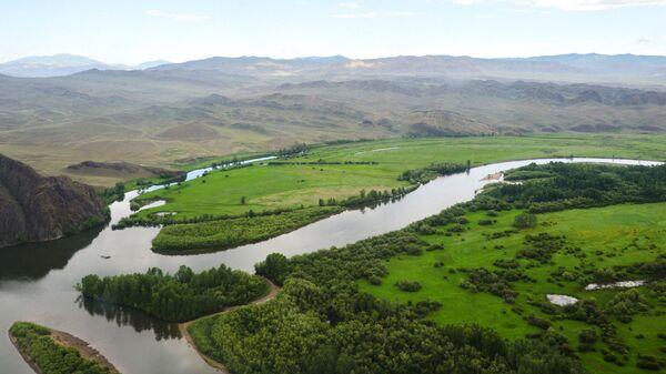 На границе Саяно-Шушенского заповедника были сделаны снимки манула