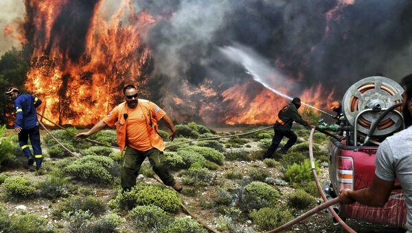 Пожарные и волонтеры пытаются потушить лесной пожар в Греции. Июль 2018 года