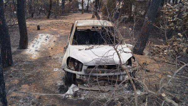 Пожары в Греции и их последствия. Архивное фото